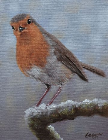 John Silver Original Oil Painting Robin Bird On A Snow Covered Branch
